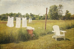 Washing line zen
