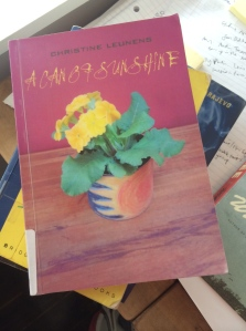 'A Can of Sunshine' by Christine Leunens, RSVP Publishing, NZ, 2014