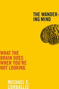 Wandering mind cover